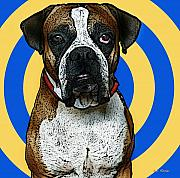 Boxer Mixed Media Metal Prints - Wild Boxer 1 Metal Print by Bibi Romer