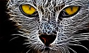 Yellow Eyes Posters - Wild Cat Poster by Stefan Kuhn