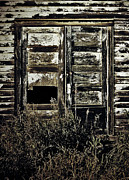 Barn Drawing Prints - Wild Doors Print by Jerry Cordeiro