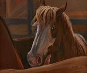 Wild Horse Pastels - Wild Hearts Will NOT Be Broken by Sheri Gordon