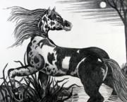 Wild Horse Print by Bob Crawford