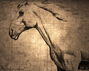 Wild Horse Mixed Media Metal Prints - Wild Horse Metal Print by Janet Kearns