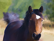 Wild Horse Mixed Media Prints - Wild Horse Print by Renee Skiba