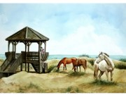 Sand Dunes Painting Framed Prints - Wild Horses of the Outer Banks Framed Print by Virginia Sonntag