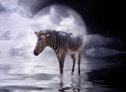 Zebra Mixed Media - Wild In The Moonlight by Carol Cavalaris