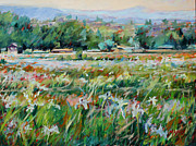 New Mexico Originals - Wild Iris by Marie Massey