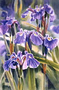 Blue Flowers Painting Posters - Wild Irises #1 Poster by Sharon Freeman