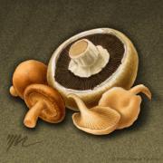 Wild Mix Mushrooms Print by Marshall Robinson