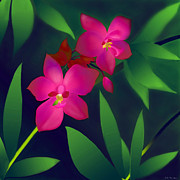 Floral Digital Art Originals - Wild Orchids by Latha Gokuldas Panicker