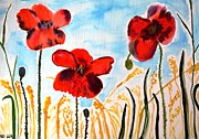 Poppies Field Paintings - Wild Poppies by Valerie Ornstein