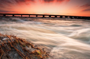 Lake River Framed Prints - Wild River Framed Print by Evgeni Dinev