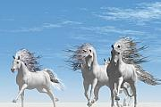 Wild Horse Digital Art Prints - Wild Side Print by Corey Ford