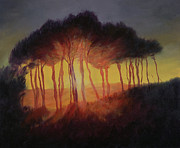 Woods; Shadows; Trees Paintings - Wild Trees at Sunset by Antonia Myatt