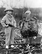 Toy Animals Prints - Wild Turkey Print by Archive Photos