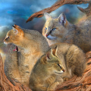 The Art Of Carol Cavalaris Prints - Wildcat Day Print by Carol Cavalaris