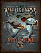 Wildlife Paintings - Wilderness mallard by JQ Licensing
