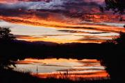 Landscape Posters Framed Prints - Wildfire Sunset Reflection Image 28 Framed Print by James Bo Insogna