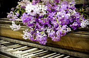 Wildflower Music Print by Kathy Jennings