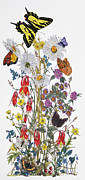 Western Mixed Media Posters - Wildflowers and Butterflies of the Valley Poster by Constance Widen