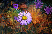 Photoart Photos - Wildflowers by Ed Hall