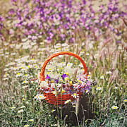 Basket Prints - Wildflowers Print by Julia Davila-Lampe