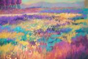 Sheliah Halderman - Wildflowers