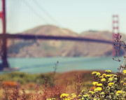 Built Structure Art - Wildflowers With Golden Gate Bridge by Liz Rusby