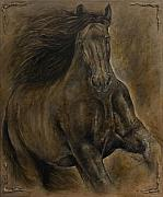 Horse Drawings Prints - Wildheart....sang to me Print by Paula Collewijn -  The Art of Horses