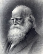 Abolition Art - William Cullen Bryant 1794-1878 Was An by Everett