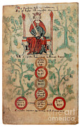 Genealogy Prints - William The Conqueror Family Tree Print by Photo Researchers