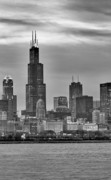 Chicago Black White Digital Art Posters - Willis Tower Poster by Donald Schwartz