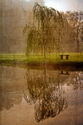 Landscape Greeting Cards Posters - Willow on the Pond Poster by Debra and Dave Vanderlaan