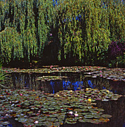 Giverny Prints - Willows and Water-Lilies Print by Alex Cassels