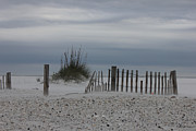 Sand Fences Framed Prints - Wind Blown Framed Print by Deborah Hughes