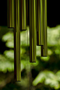 Wind Chimes Framed Prints - Wind Chimes Framed Print by Don Schwartz