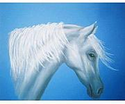 Horse Pastels Paintings - Wind by Diana Cochran