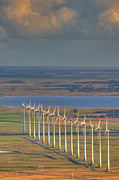 Environmental Conservation Prints - Wind Energy Print by by Roberto Peradotto
