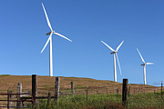 Sunset Light Posters - Wind energy wind turbines in a field Washington state. Poster by Gino Rigucci