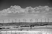 Conservation Art Framed Prints - Wind Farm II Framed Print by Ricky Barnard