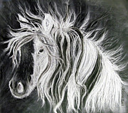 Rodeo Art Drawings - Wind Horse Ghost by Teresa Vecere