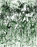 Corn Stalks Art - Wind In The Corn by Will Borden
