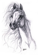 Arabian Horse Drawings - Wind In The Mane 2 by Angel  Tarantella