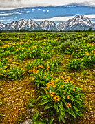 Gregory Dyer - Wind River Range in West Central Wyoming