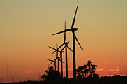 Rural Indiana Prints - Wind Towers Silhouette  Print by Jim Ferrier