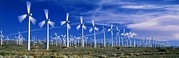 Production Photos - Wind Turbines, California, Usa by David Nunuk