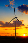 Efficiency Metal Prints - Wind turbines Metal Print by Gabriela Insuratelu