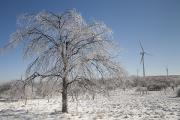 Production Photos - Wind Turbines In Winter After An Ice by Skip Brown