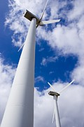 Green Power Prints - Wind Turbines Print by Mark Williamson