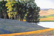 Sonoma Pastels Prints - Windbreak Print by Marti Walker