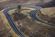 Destiny Prints - Winding Road Print by Idaho Scenic Images Linda Lantzy